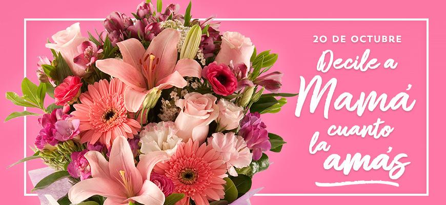 Florerias Envío De Flores A Domicilio En Buenos Aires