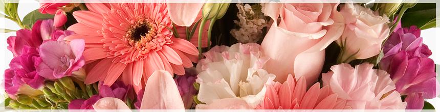 Enviar Arreglos Florales A Domicilio En Argentina